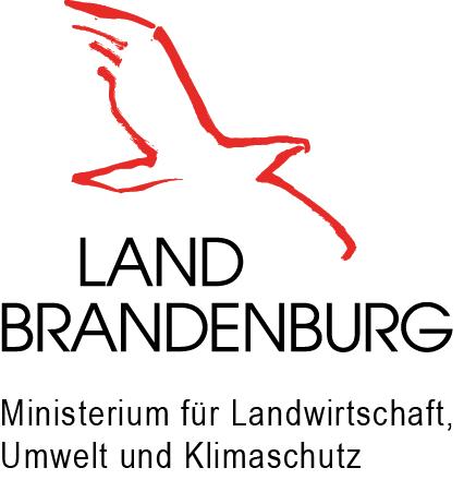 Logo MLUK